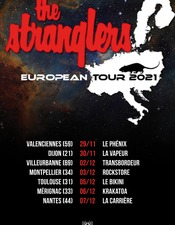 the-stranglers-valenciennes-phenix.jpg
