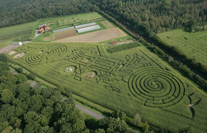 Labyrinthe Végétal Beauregard 2 - Aubry-du-Hainaut
